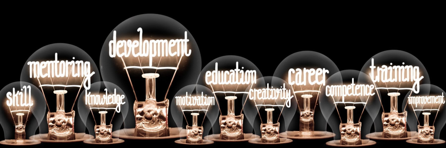Light Bulbs with Development Concept