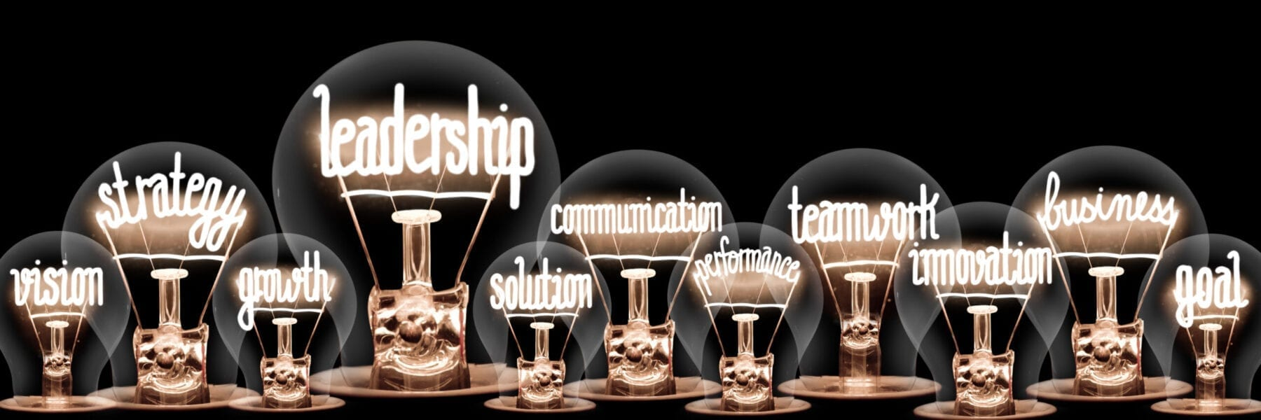 Light Bulbs with Leadership Concept